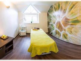 Medaus terapija