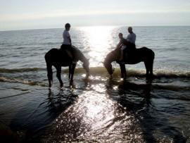 Romantiškas jodinėjimas prie jūros
